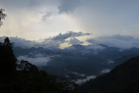 Science Corner – Monitoring threats to mammals in the cloud forests of Cusuco National Park