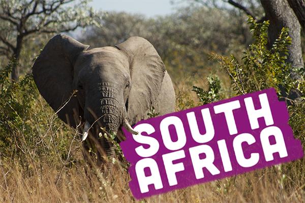 opwall-southafrica-liveints1