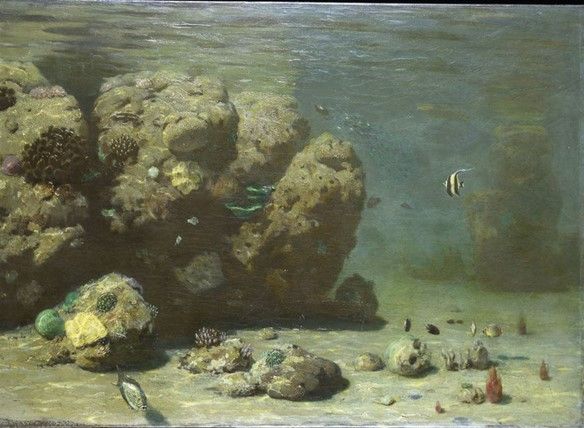 The painting of a coral reef done from the Diving Bell by made from Eugen von Ransonnet-Villez: Underwater oilpainting, before 1892, NHM Vienna, photo: A. Schumacher 'Visual Histories' Science Visualization in Nineteenth-Century Natural History Museums - Scientific Figure on ResearchGate. Available from: https://www.researchgate.net/figure/Eugen-von-Ransonnet-Villez-Underwater-oilpainting-before-1892-NHM-Vienna-photo-A_fig2_337700853 [accessed 6 Oct, 2020]