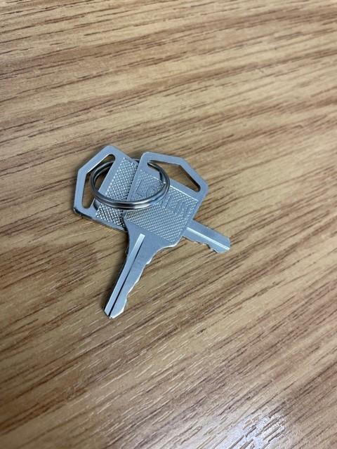 Bison Acorn 80 Keys pre 2015