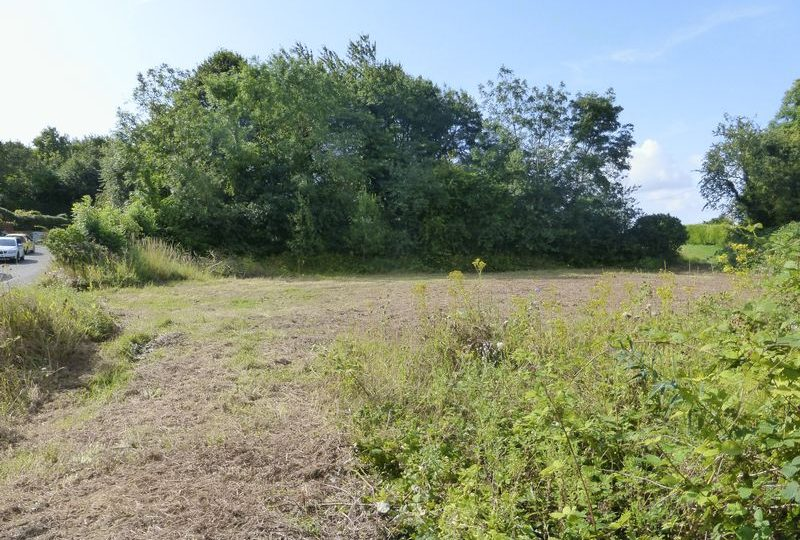 Building Plot (Plots 1 & 2), Main Road, Skendleby, Spilsby