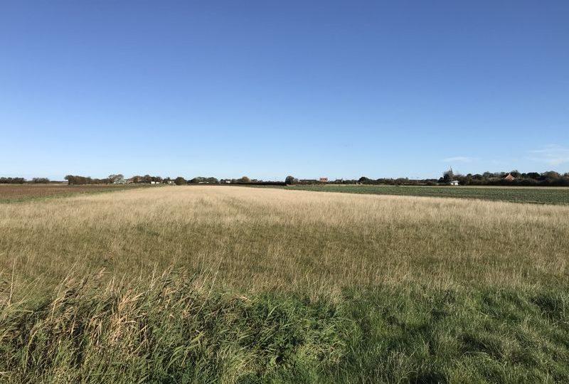 58.29 Acres of Productive Grade 3 Arable Land, Listoft, Hogsthorpe, Skegness